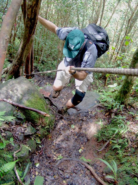 Laie falls trail Oahu